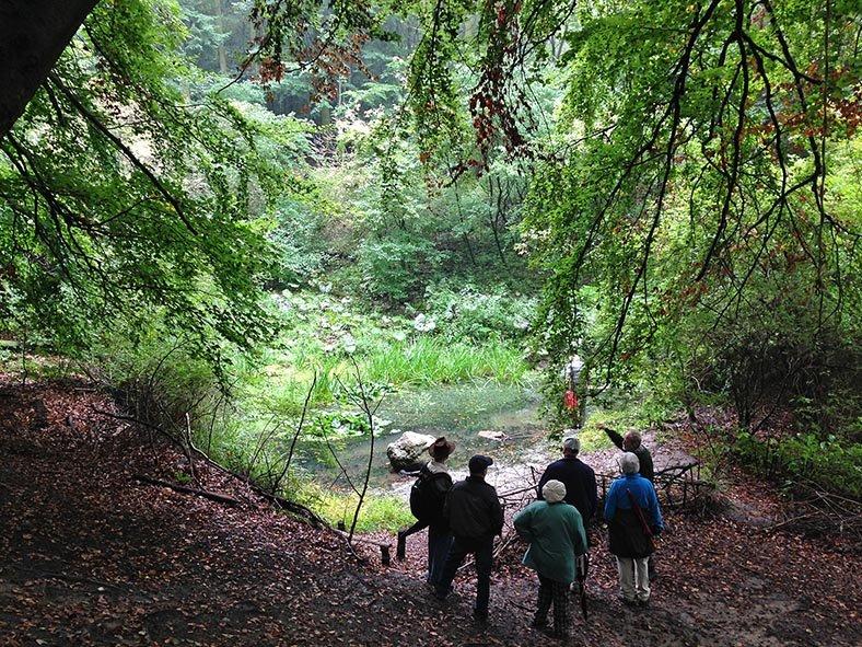 Treffen der Vogelschutzbeauftragten - Wühlmausweiher 2 small