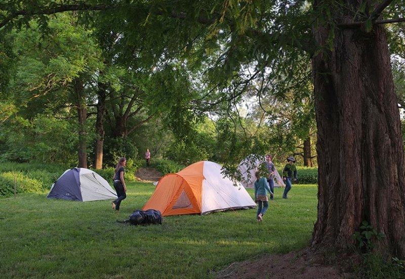 Camp Mückenplage 08