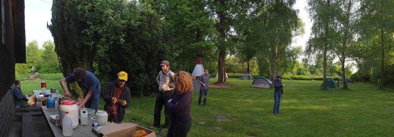 Camp Mückenplage 03