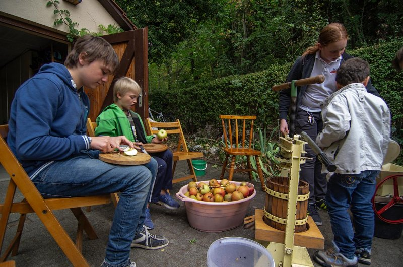 Erntefest der Wühlmäuse - Apfel-Kelterei