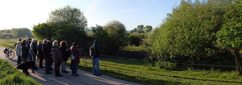 Vogelstimmenwanderung Landbachaue 1