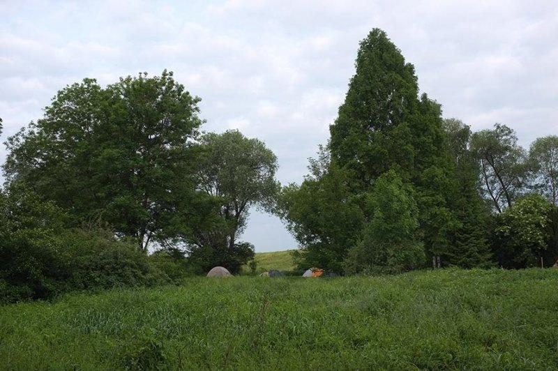 Camp Mückenplage am Morgen 1
