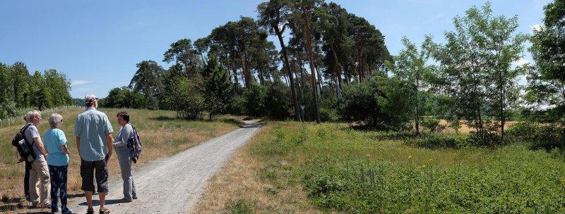 Bickenbacher Düne 1