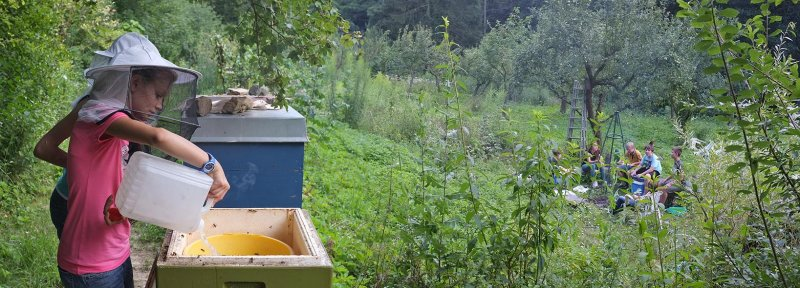 Juliane füttert die Bienen
