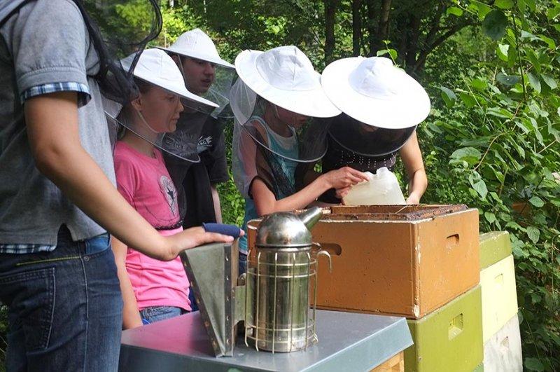 Lisa Dodo Jens und Juliane füttern die Bienen