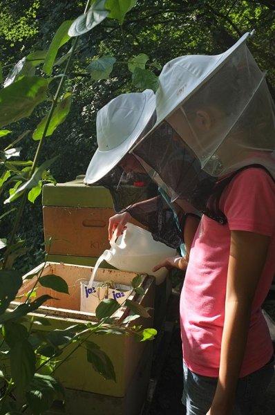 Lisa und Jukiane füttern die Bienen 2