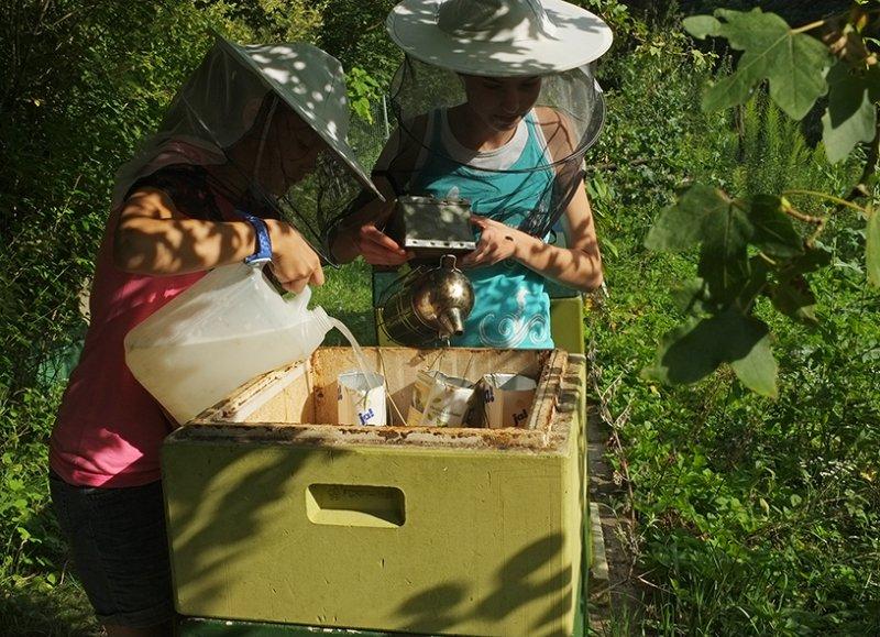Lisa und Juliane füttern die Bienen 3