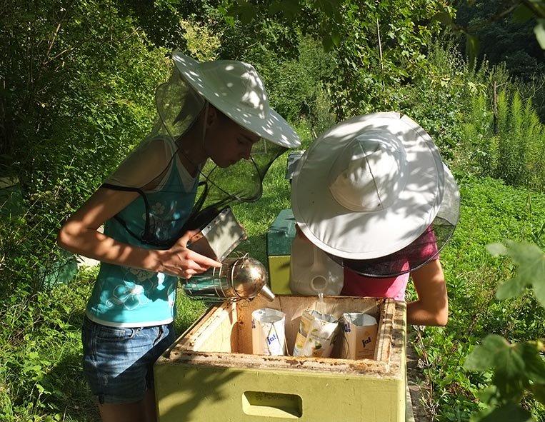Lisa und Juliane füttern die Bienen 4