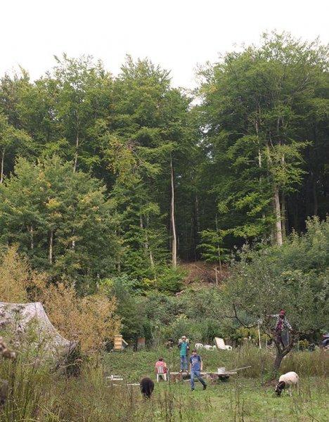 Apfelernte Etzwiesen 6