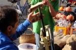 Apfelsaftkelterei der Wühlmäuse 08