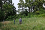 Götterbaumweide Unterstand bauen 2 10x15s