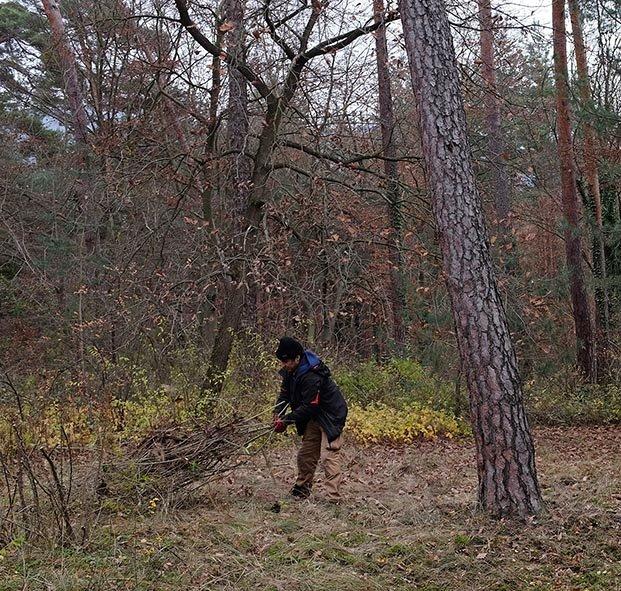 Waldeinsatz Breslauer Str 10