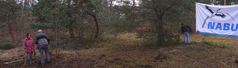 Waldeinsatz Breslauer Str 18