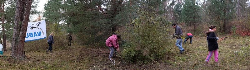 Waldeinsatz Breslauer Str 02