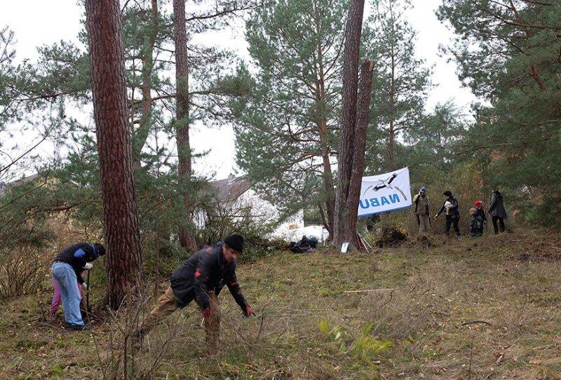 Waldeinsatz Breslauer Str 06