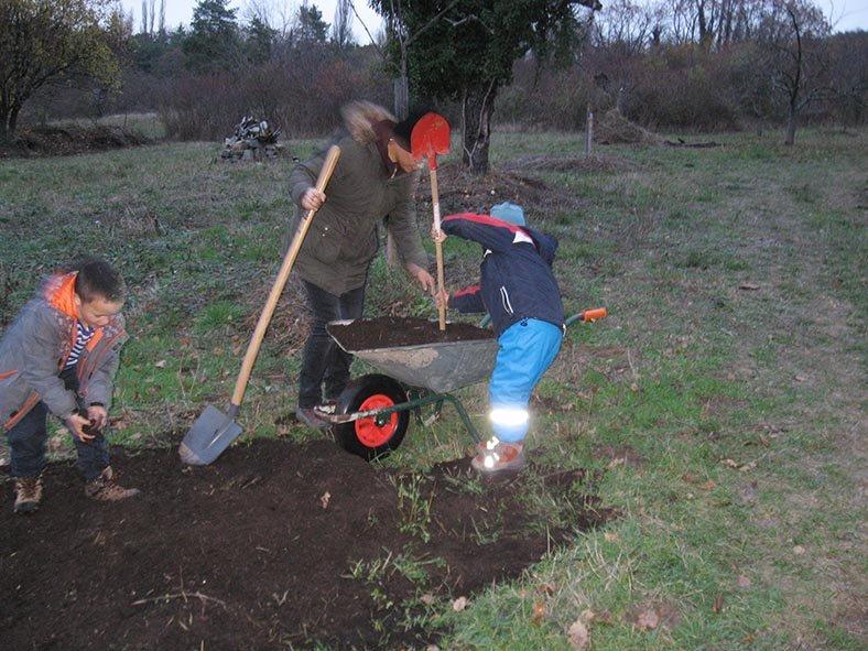 Füchse - Gartenarbeit