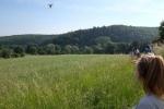 Weide am Burgweg 1