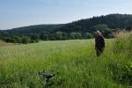 Weide am Burgweg 4