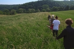Weide am Burgweg 5