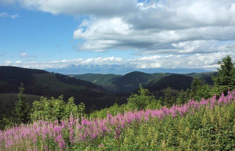 11 Abstieg - Blick auf Hohe Tatra