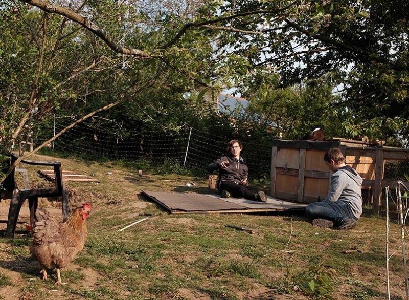 Hühnerdach 08