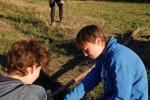 Sitzkrücke für Greifvögel - Kirschgarten 03 10x15s