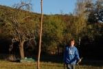 Sitzkrücke für Greifvögel - Kirschgarten 34 10x15s