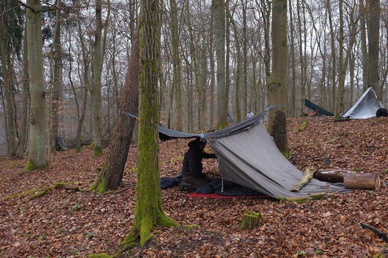 05 Wühlmaus-Camp im Wald
