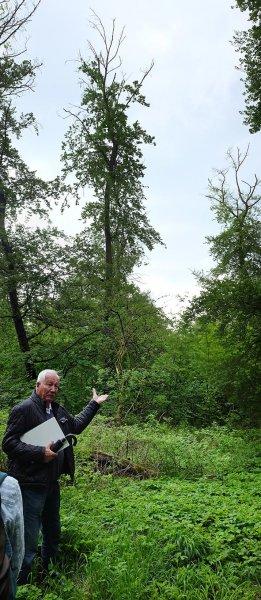 Prof. Dr. Rosenstock im Darmstädter Stadtwald