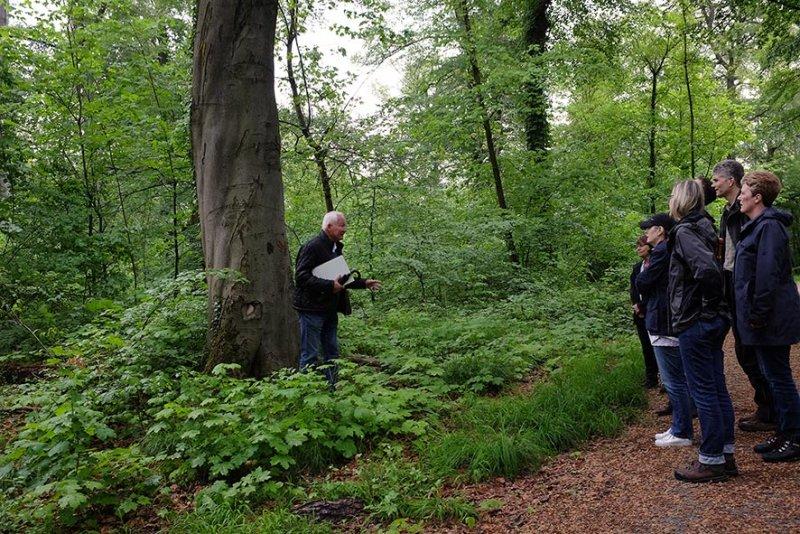 Waldschäden Eberstadt Rosenstock 3 10x15s