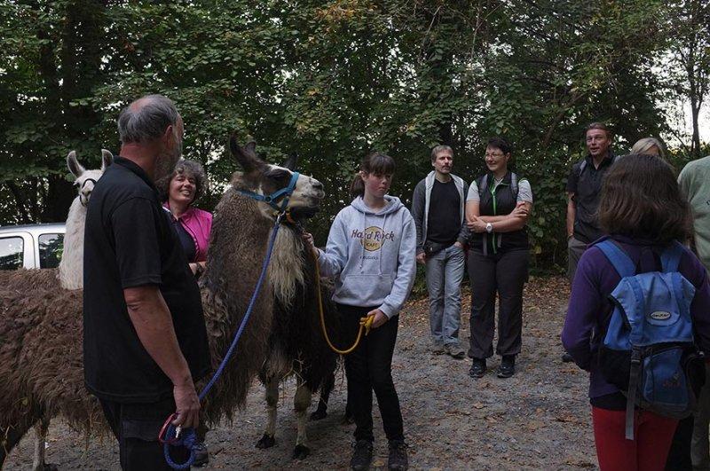 Lama-Wanderung Einweisung 1