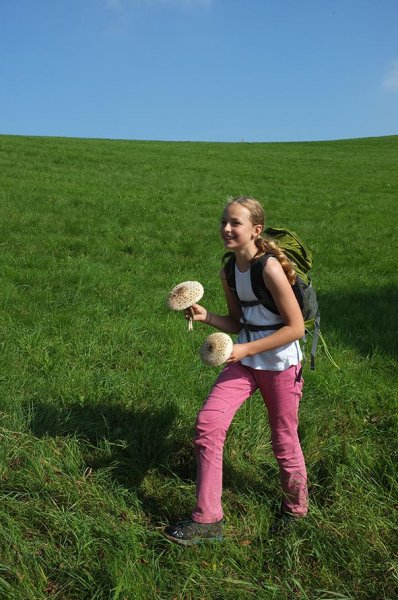 Lama-Wanderung Ober-Beerbach 13