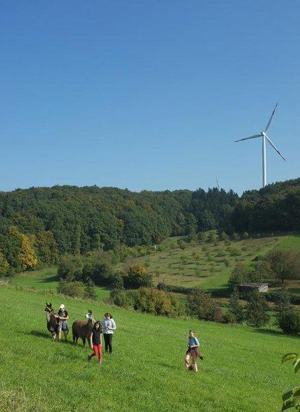 Lama-Wanderung Ober-Beerbach 04