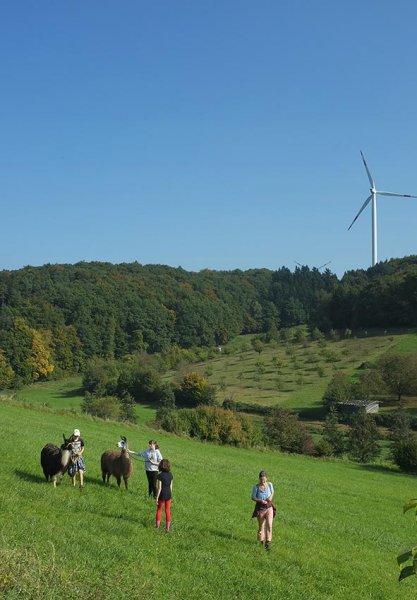 Lama-Wanderung Ober-Beerbach 05