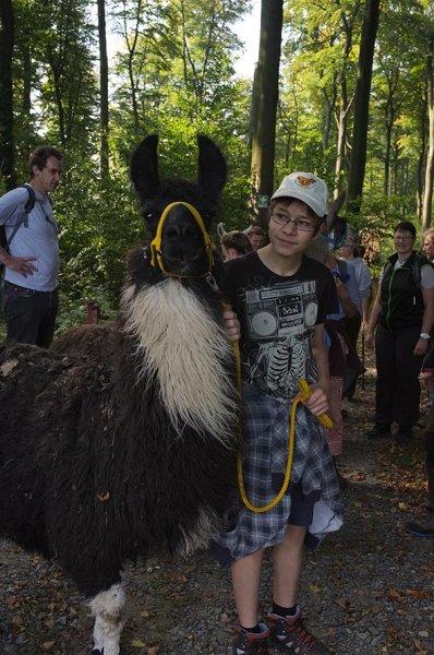 Lama-Wanderung Wald 13