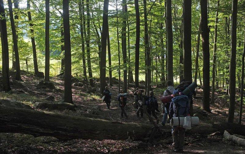 Überlebenstour - Marsch durch den Wald 1