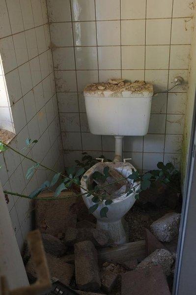 Rimdidim Ruine - Klo mit Brombeerranke