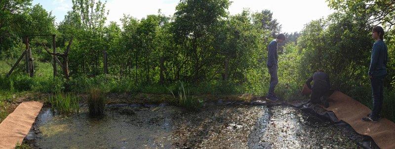 Teich im Wühlmausgarten 04