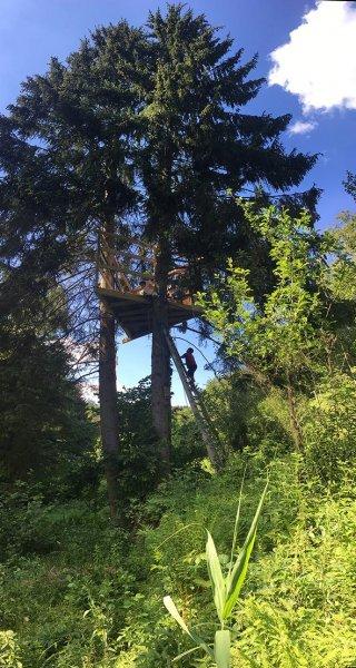 Baumhaus Etzwiesen 2 10x19s