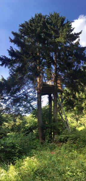 Baumhaus Etzwiesen 4 10x21s