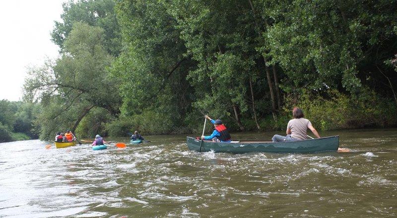 Mainfahrt - Leichtes Wildwasser 8