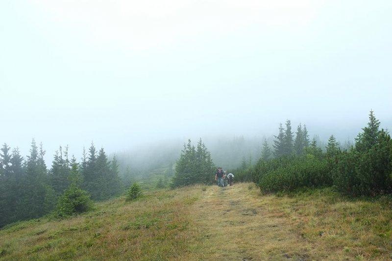 Aufstieg von der Hütte