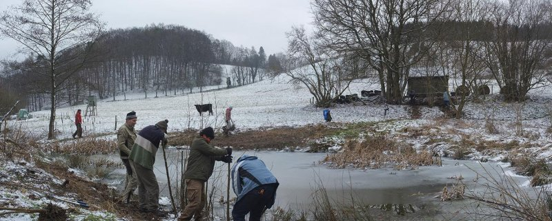 15 Arbeitseinsatz Froschteich am Beerbach