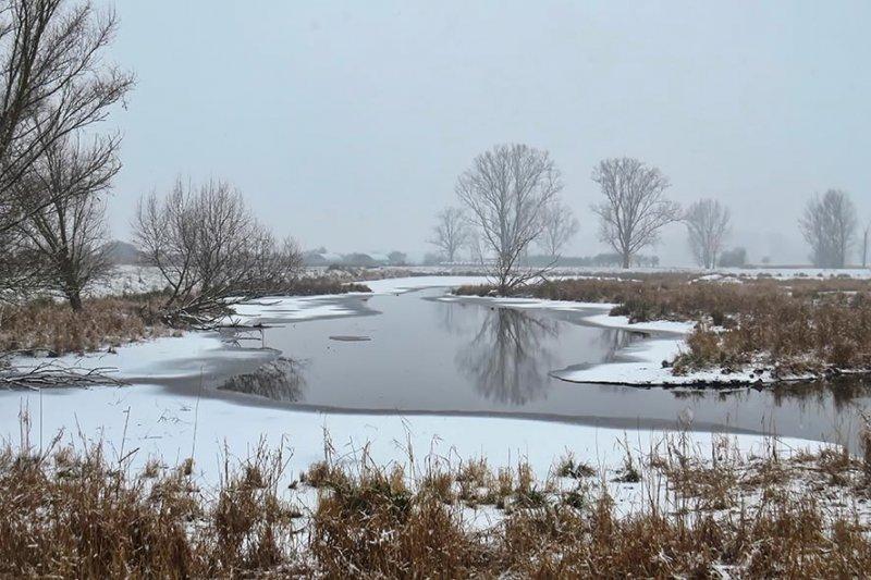 01 Winterliche Auenlandschaft