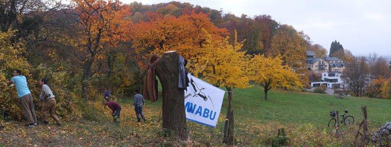 Einsatz NABU-Grundstück 23