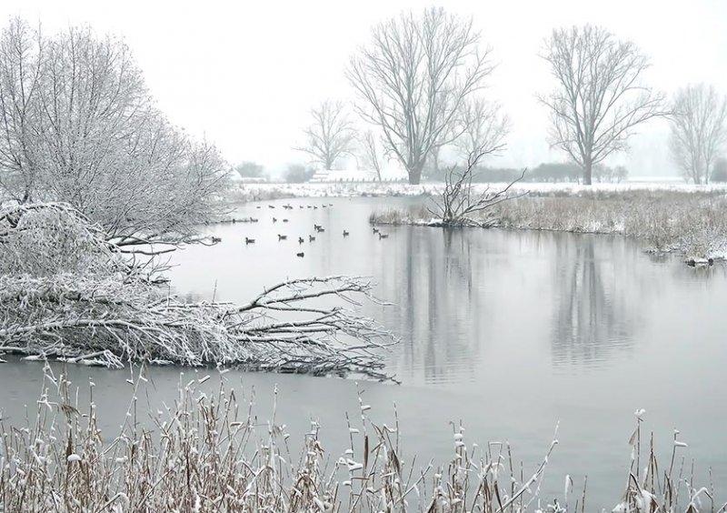 02 Winterliche Landbachaue