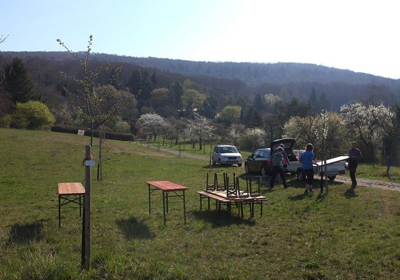Aufbau-Kirschblütenfest-01-10x15s
