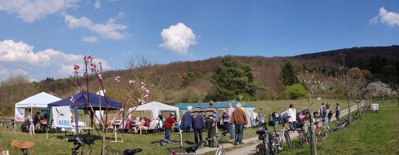 Kirschblütenfest-09-10x26s