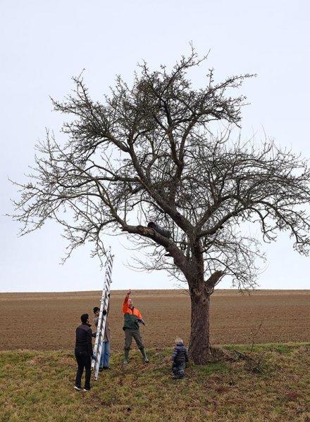 Euleneinsatz Fränkisch-Crumbach 06