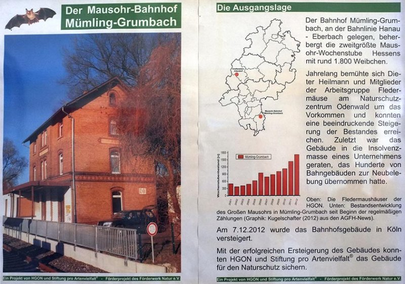 Fledermaus-Bahnhof Schild 10x15s